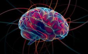 [:es]Conferencias del neurobiólogo Lionel Naccache[:fr]Conférence Pourquoi le cerveau? du neurobiologiste Lionel Naccache[:]