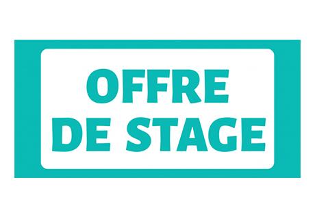 El Instituto Francés de Chile propone 2 prácticas bilingües francés/español